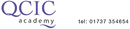 Logo QCIC